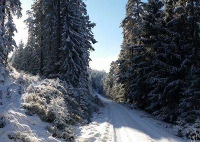 Murgschifferschaft - Winter